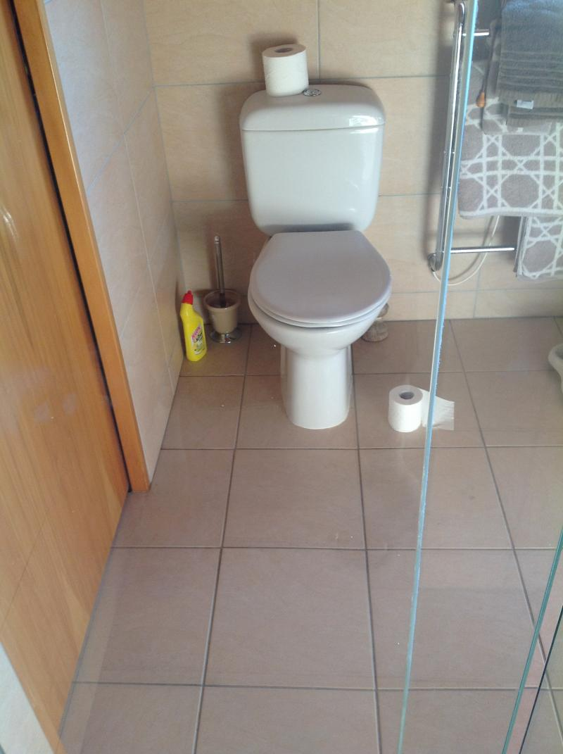 shower door after